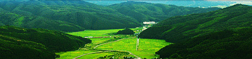 米川 里山
