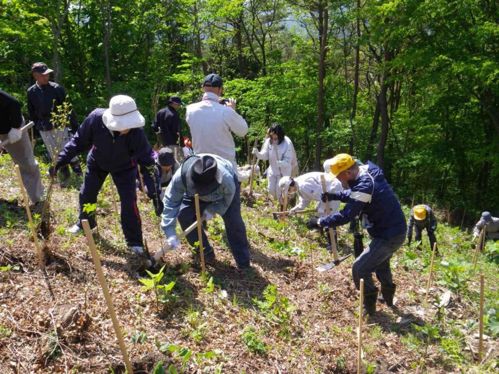 植林体験と山菜狩り 001