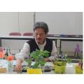 平成28年度「絵手紙教室開講式」開催しました。